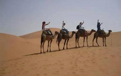 escapada al desierto 4 dias