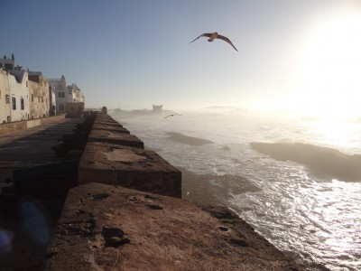 excursiones marrakech essaouira