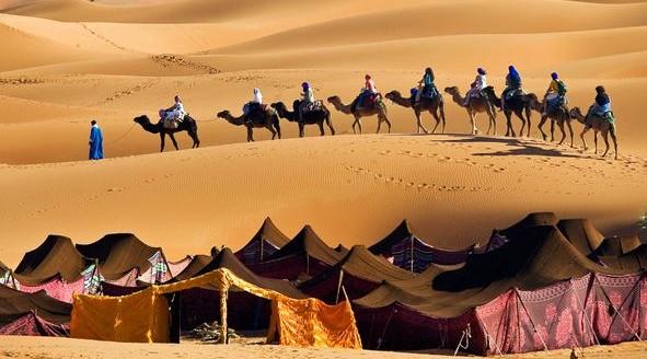 erg-chebbi-desert-camel-trip_11928_600x450